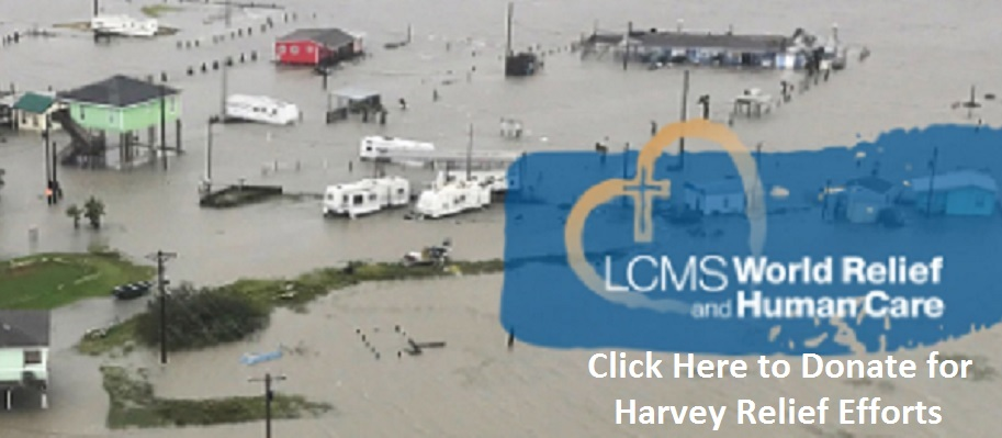 Harvey5
